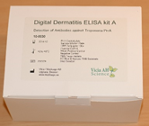 Digital dermatitis ELISA kit A