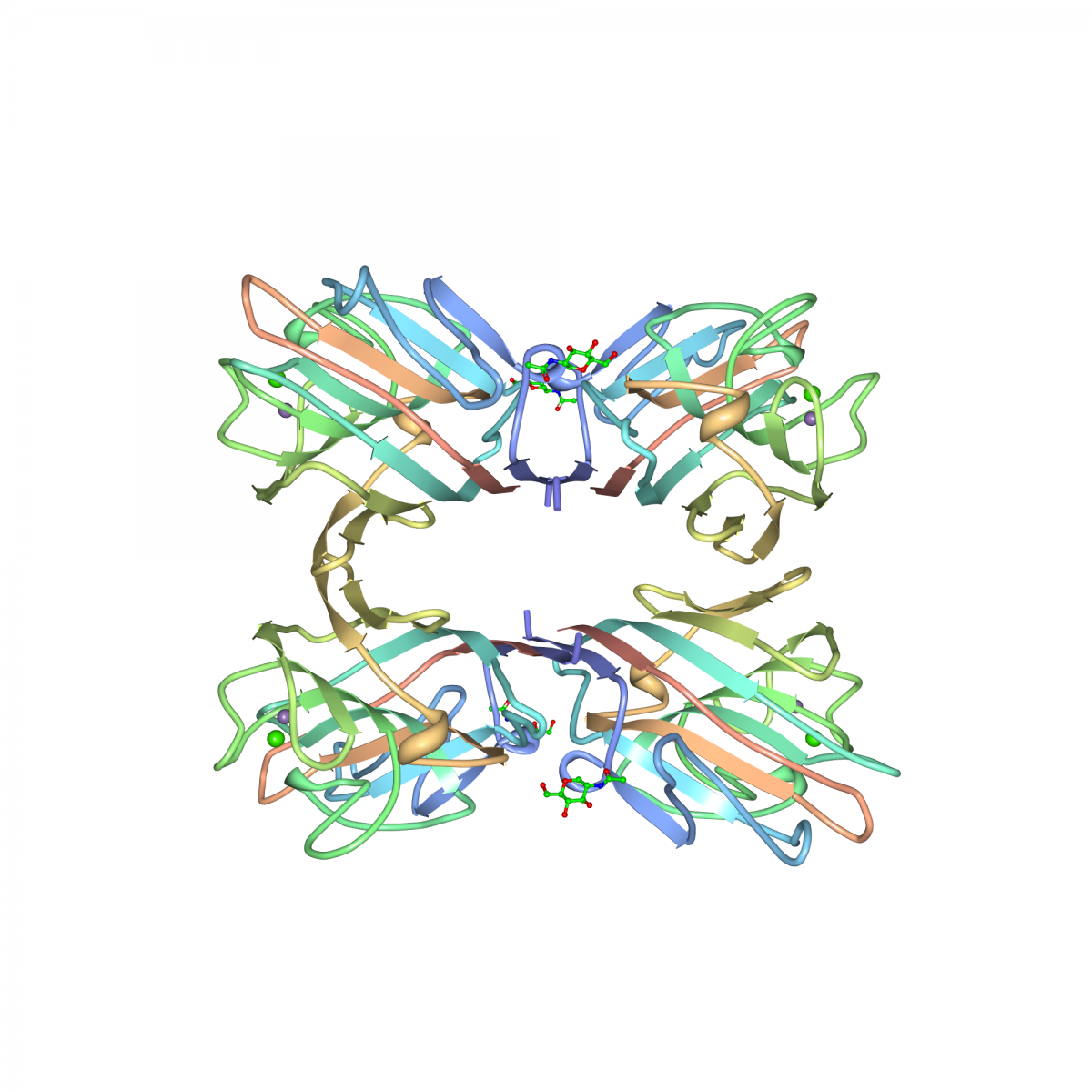 Crystal structure of PHA-L