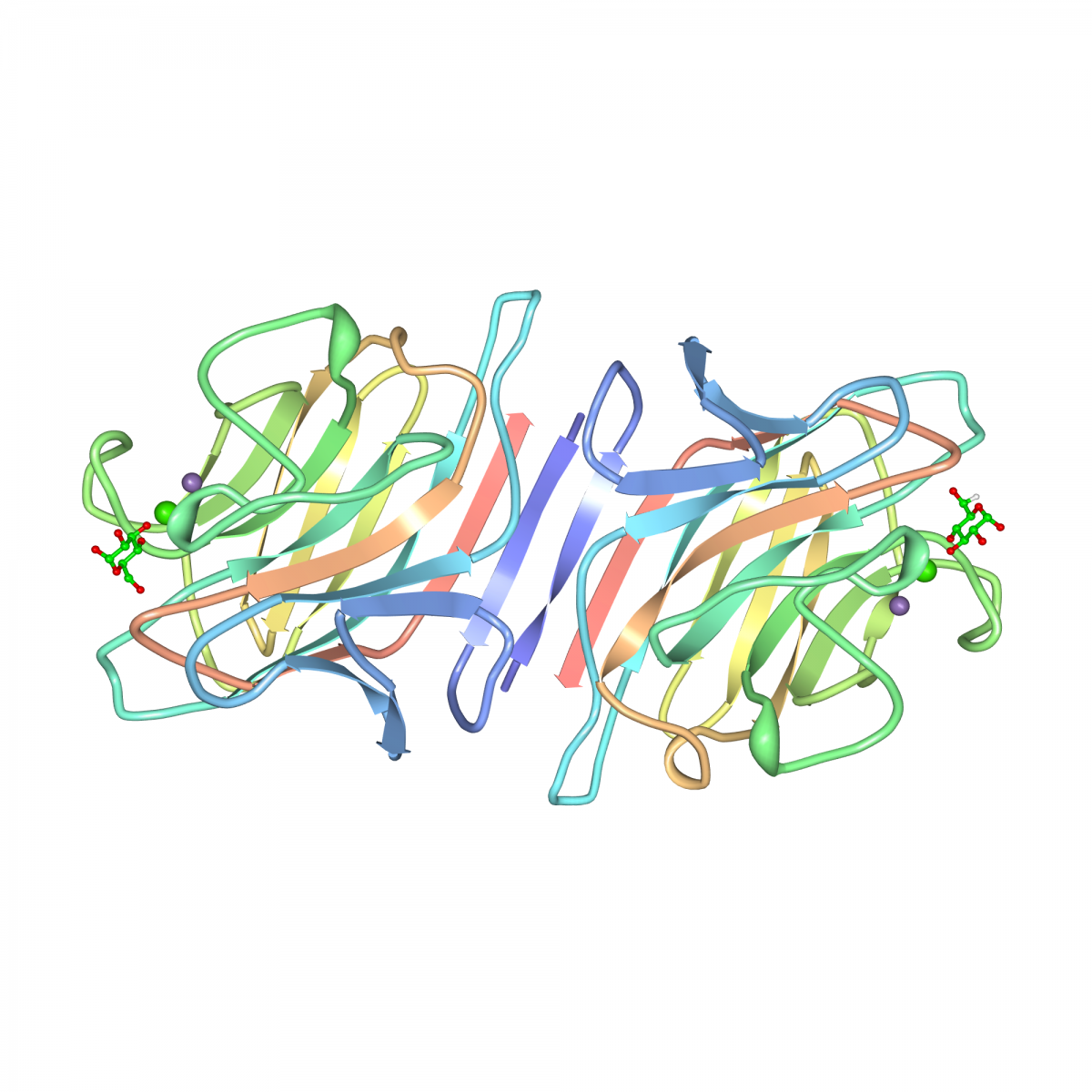 Crystal structure of PSA-D-glucopyranose complex